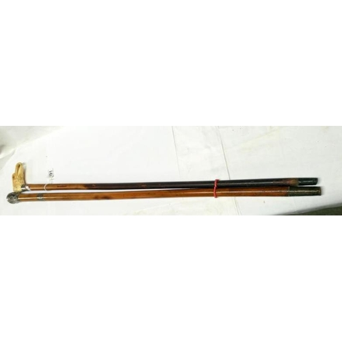 491 - A walking stick with resin handle of a hawks head and a walking stick with white metal top and mount...