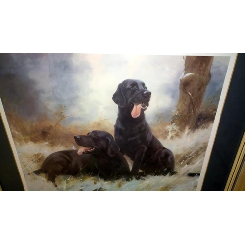 684 - A John Trickett limited print of black labradors, signed and dated 1985...