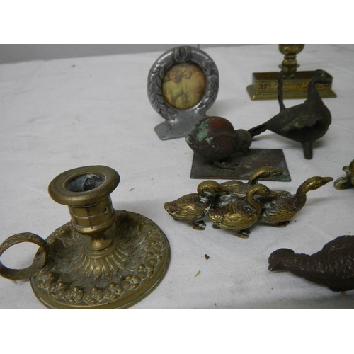 547 - A mixed lot of small brass and bronze items including Chamber Candlestick, animals, hat pin stand, B...