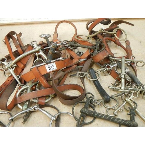 313 - A good clean lot of horse tack including riding bits.