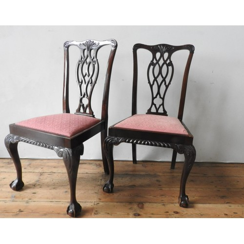 59 - A SET OF FOUR MAHOGANY CLAW FOOT DINING CHAIRS, with carved fretwork splat backs, 99 x 46 x 58 cm