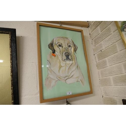 4 - Modern light oak frame containing Labrador portrait...
