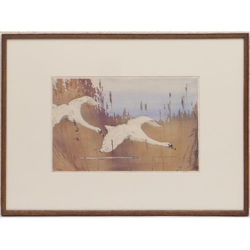 537 - Allen William Seaby (1867-1953), Mute swans in flight, hand coloured woodblock print, signed in penc...