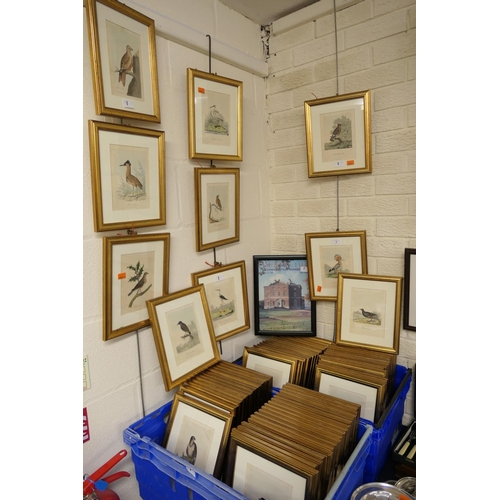 1 - George Graves (engraver) quantity of framed aquatint engravings of British birds taken from books pu...