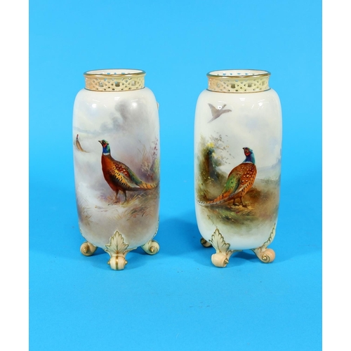 170 - An early 20th century Royal Worcester pair of near matching vases of cylindrical form, with hand pai...