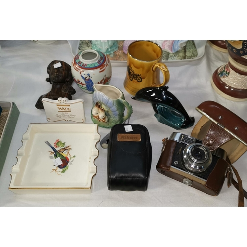 185a - A Poole dolphin and other china; a Voigtlander cameraq; a Nikon camera...