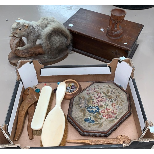 74 - A selection of bric a brac including a taxidermy example of a grey squirrel etc...