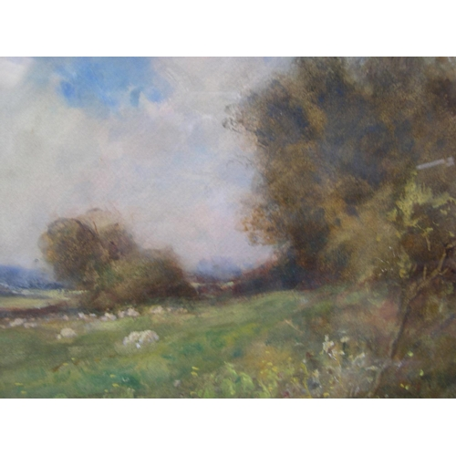 807 - indistinctly signed, Edwardian impressionist watercolour, sheep in landscape, signed, framed and gla...