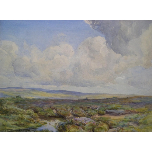 813 - Indistinctly signed, 1916 watercolour, extensive moorland landscape, indistinctly signed, dated, woo...