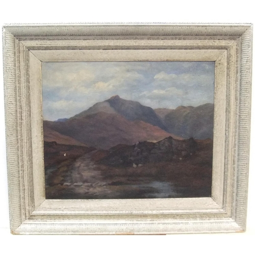 671 - Unsigned, early 20thC oil on canvas,