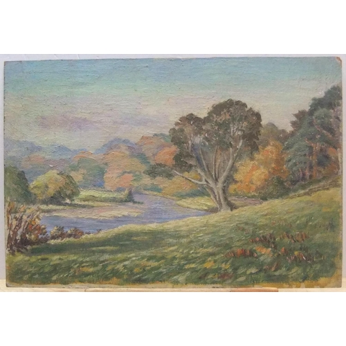 497 - Unsigned, mid 20thC impressionist oil on board,