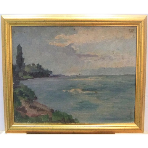 403 - Unsigned, mid 20thc French post-impressionist oil on board,