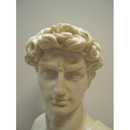 230 - Large, 20thC, classical looking bust of David  54 cm high...