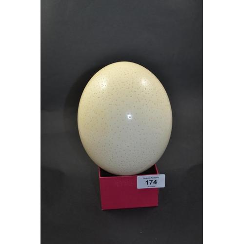 174 - Ostrich egg...