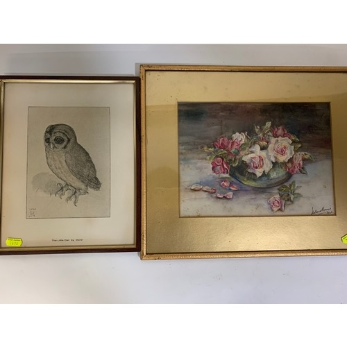 27 - Vintage print of 'The Little Owl' by Durer. Still life watercolour by Helena Brune?? (with foxing) W...