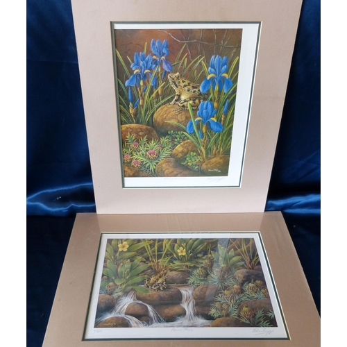 201 - Edwin Cripps Pair of Signed Limited Edition Coloured Prints