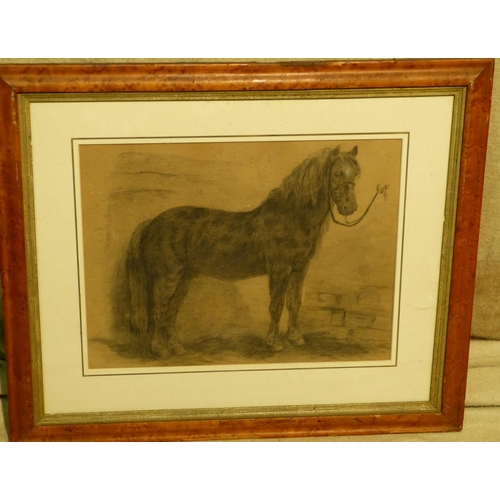 211 - A Pencil Sketch depicting horse in stable, in walnut frame, 32cm x 42cm...