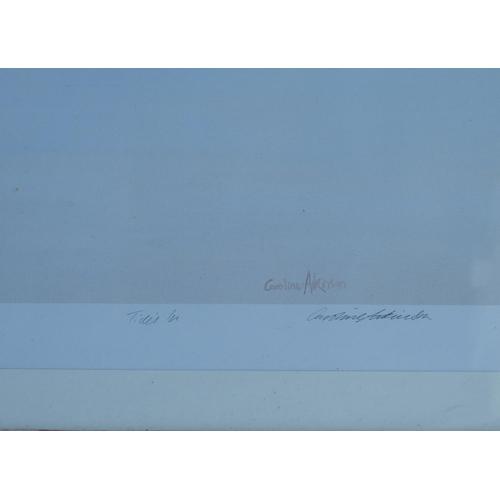 248 - Caroline Atkinson Signed Limited Edition Coloured Print