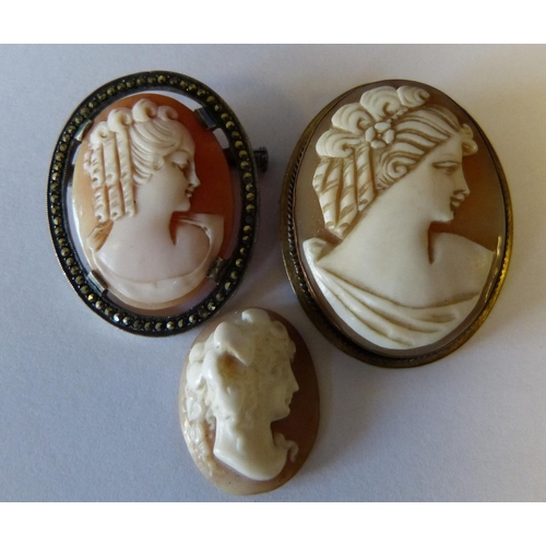 542 - An Oval Cameo Brooch in silver mount, another cameo brooch and an oval cameo (3)...