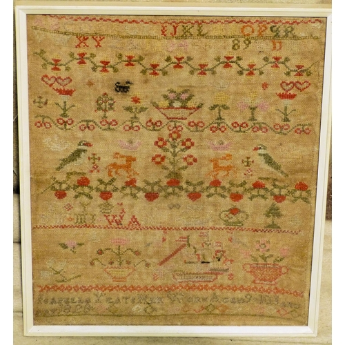 643 - A 19th Century Small Sampler, having bird, vase, floral decoration, dated 1828, in white frame, 30cm...
