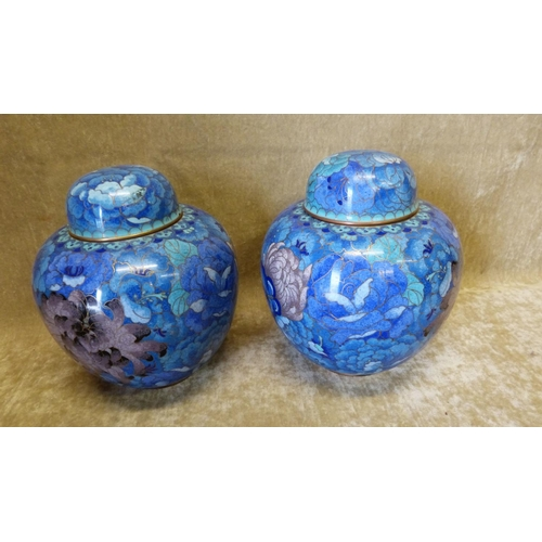 818 - A Pair of Cloisonné Bulbous Ginger Jars with Covers on blue ground with multicoloured floral and lea...