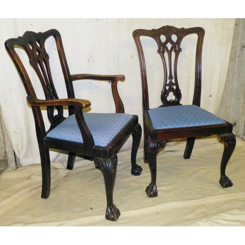 906 - A Set of 8 Early 20th Century Mahogany Chippendale Style Dining Chairs having raised carved decorati...