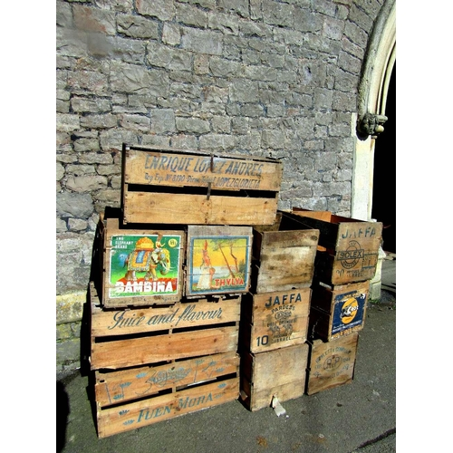 Eleven wooden fruit crates,including nine two divisional examples,two bearing original paper labels advertising Crock brand and Bambina the Elephant brand,the others with printed lettering
