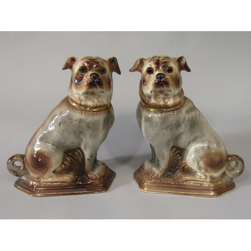 19 - A pair of late 19th century Staffordshire model figures of seated pugs with gilt collars and glass e...