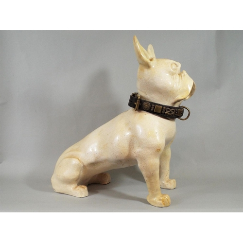 1 - A ceramic crackle glazed French Bulldog wearing an old leather collar with brass stud and other deta...
