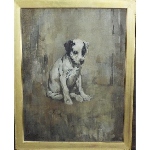 349 - Sir George Pirie PRSA (Scottish 1864-1948) - Study of a seated brown and white pup with patch over i...