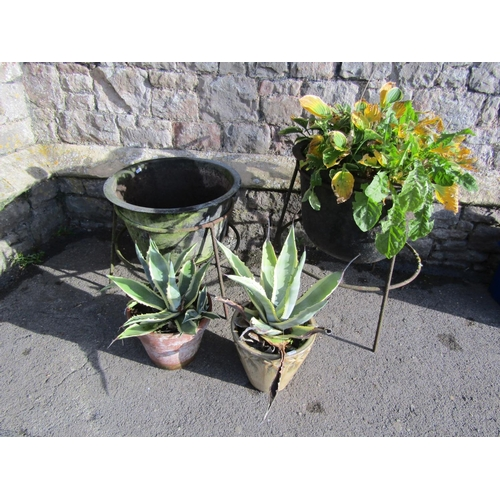 2017 - Two similar vintage cast iron circular tubs/planters with flared rims, housed/raised on associated s...