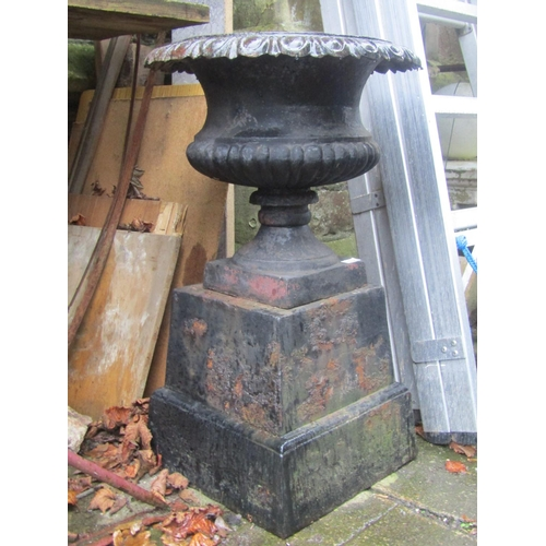 2027 - A Georgian style cast iron garden urn, the squat circular and lobbed bowl with flared egg and dart r...