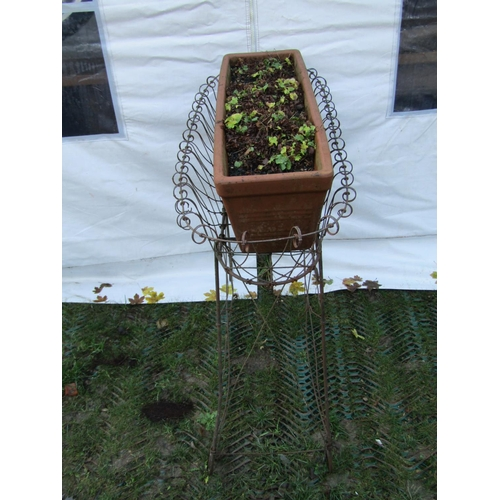 2010 - A Victorian wirework conservatory/garden planter with scroll and lattice detail, containing a more c...