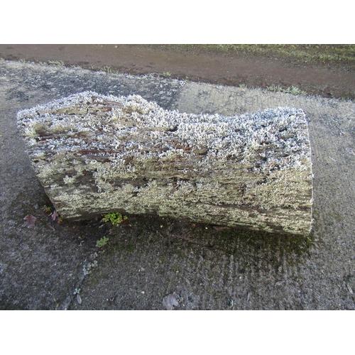 1951 - Oak log 110 cm long...