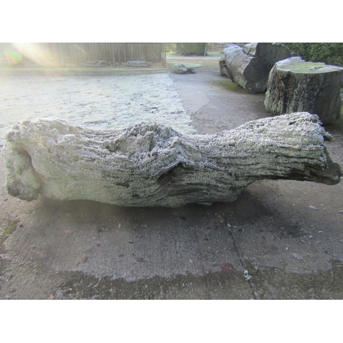1952 - Oak log 240 cm long...