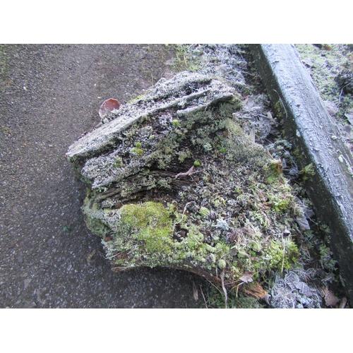 1966 - Oak log 80 cm long...