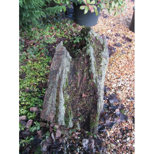 1976 - Oak log 150 cm long...