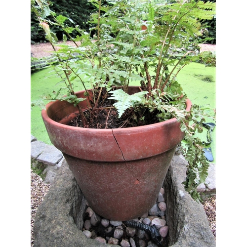 25 - A collection of three terracotta and one plastic flower pots (af)