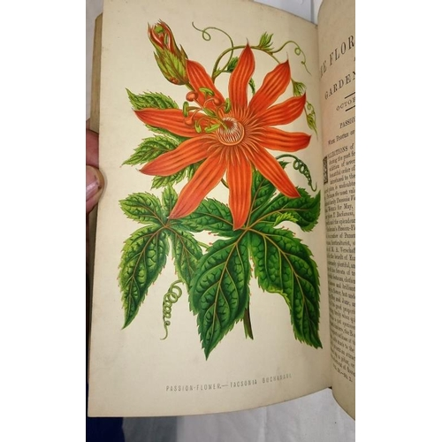 228 - The Floral World and Garden Guide 1868, the Floral World Garden Guide and Country Companion 1878 wit...