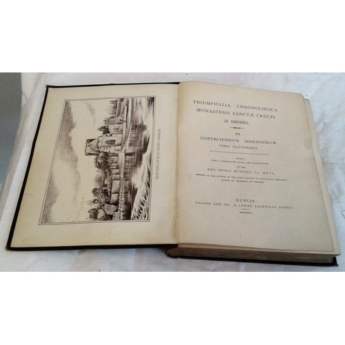 263 - Triumphalia  Chronologica Monasterii Sanctae Crucis Hibernia.  Rev. Denis Murphy. 1895. Cloth. Illus...