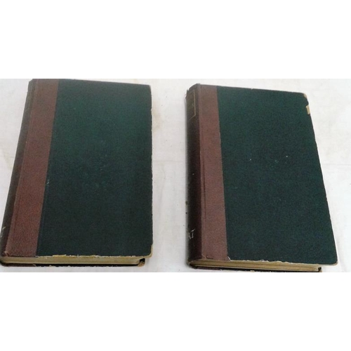 250 - Tripartite Life of St. Patrick with other documents. Edited by Whitley Stokes.  London. 1887. 2 volu...