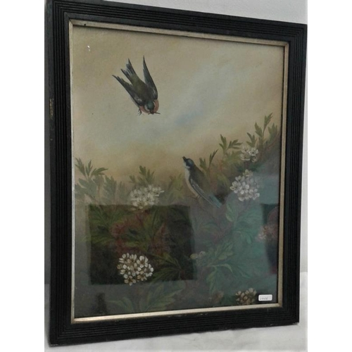 372 - Painting of 2 Swallows - Overall c. 16 x 20ins...