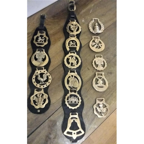 19 - Collection of Horse Brasses on Leather Straps...