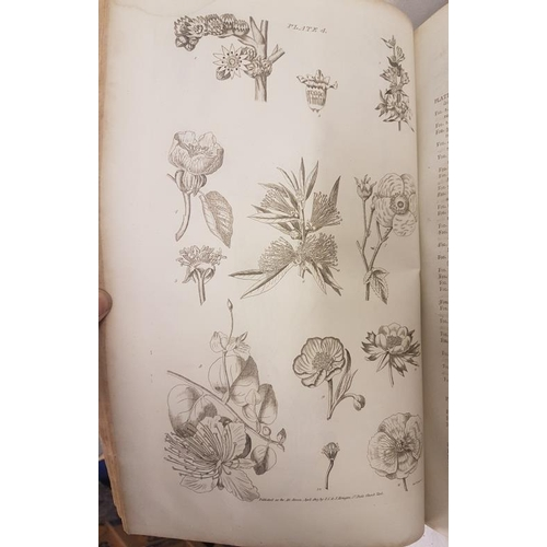 565 - The Gardener's Botanical Dictionary by Philip Miller 1807, 2 vols, illustrated large folios...