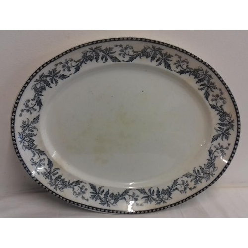 630 - Meat Serving Dish. Pountneys Bristol, Anemone Pattern...