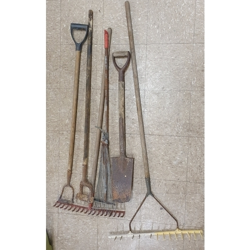 4 - Collection of Various Garden Tools...