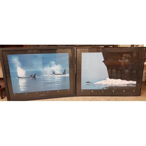 32 - Two Large Framed Prints - Orca and Evolution...