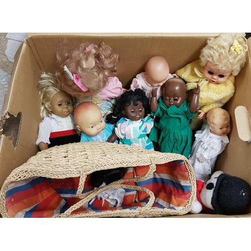 21 - Collection of Various Dolls...