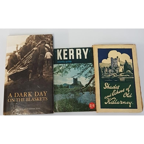 19 - M. O'Dubhshlaine '<em>A Dark Day on the Blaskets'</em> 2003, 1st Edition; <em>'Kerry County Gu...