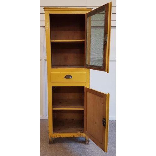 43 - Victorian Pine Frame Traditional Meat Safe - 19 x 59.5ins...